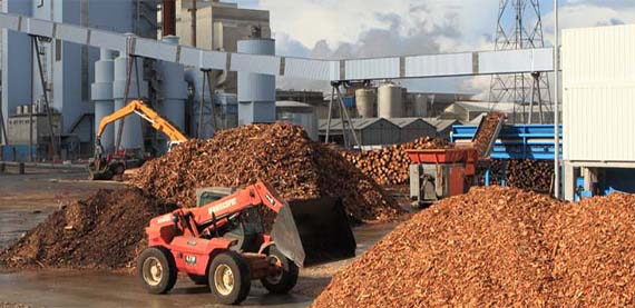 Biomass to Energy solutions for high-efficient and sustainable power